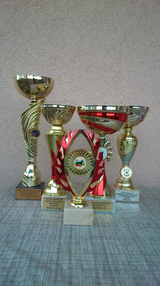 Some of Polo's Trophies